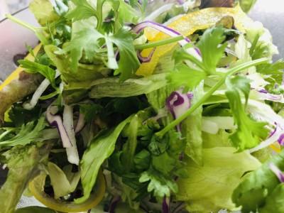 袋から出すと、野菜がシュッとして元気。パクチーの香りがすごい。